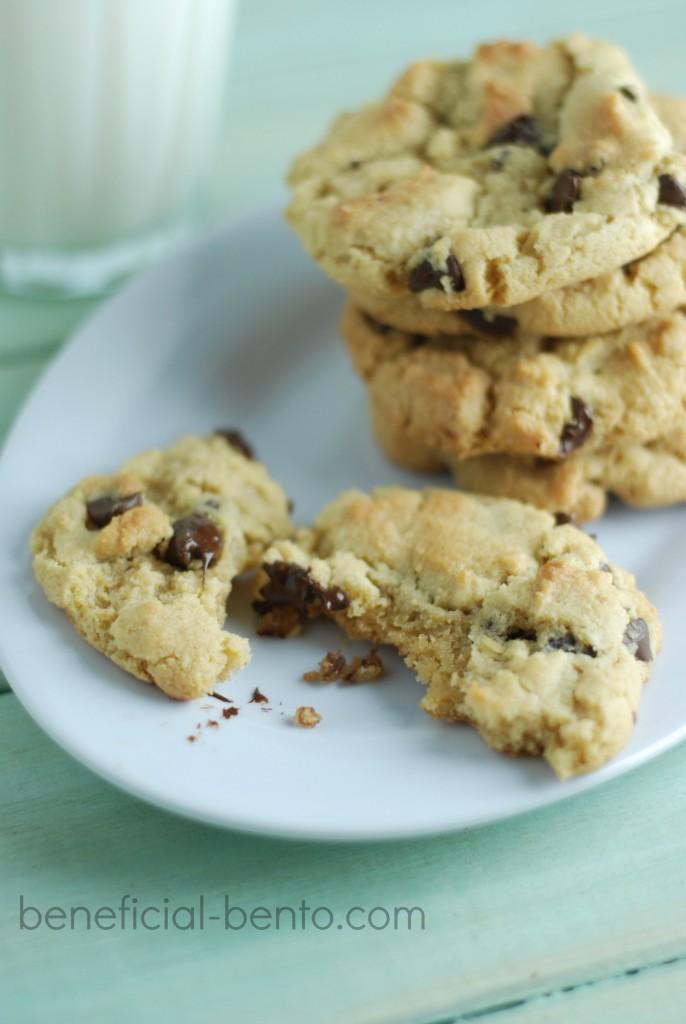 Gluten-Free Chocolate Chip Cookies Recipe — Dishmaps