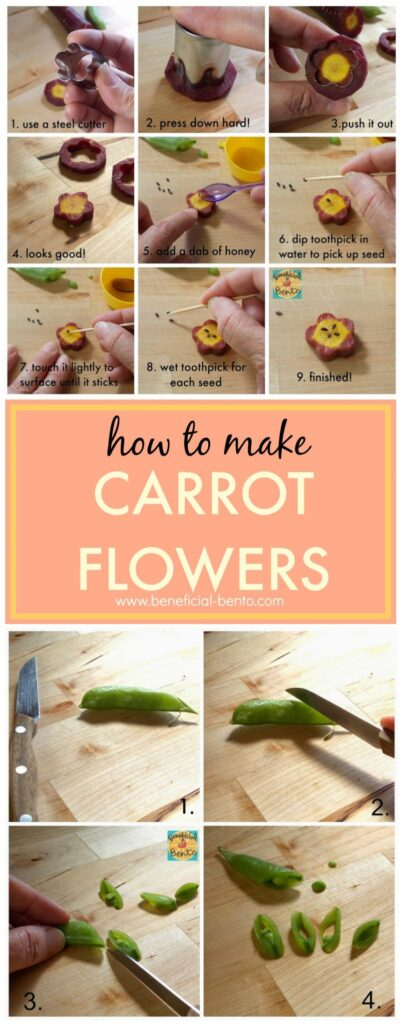 this is a collage of carrot flowers. Read more at beneficial-bento.com