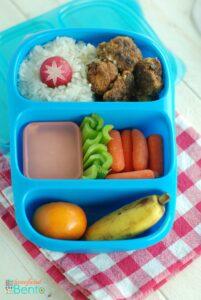 Pork and Rice Bento