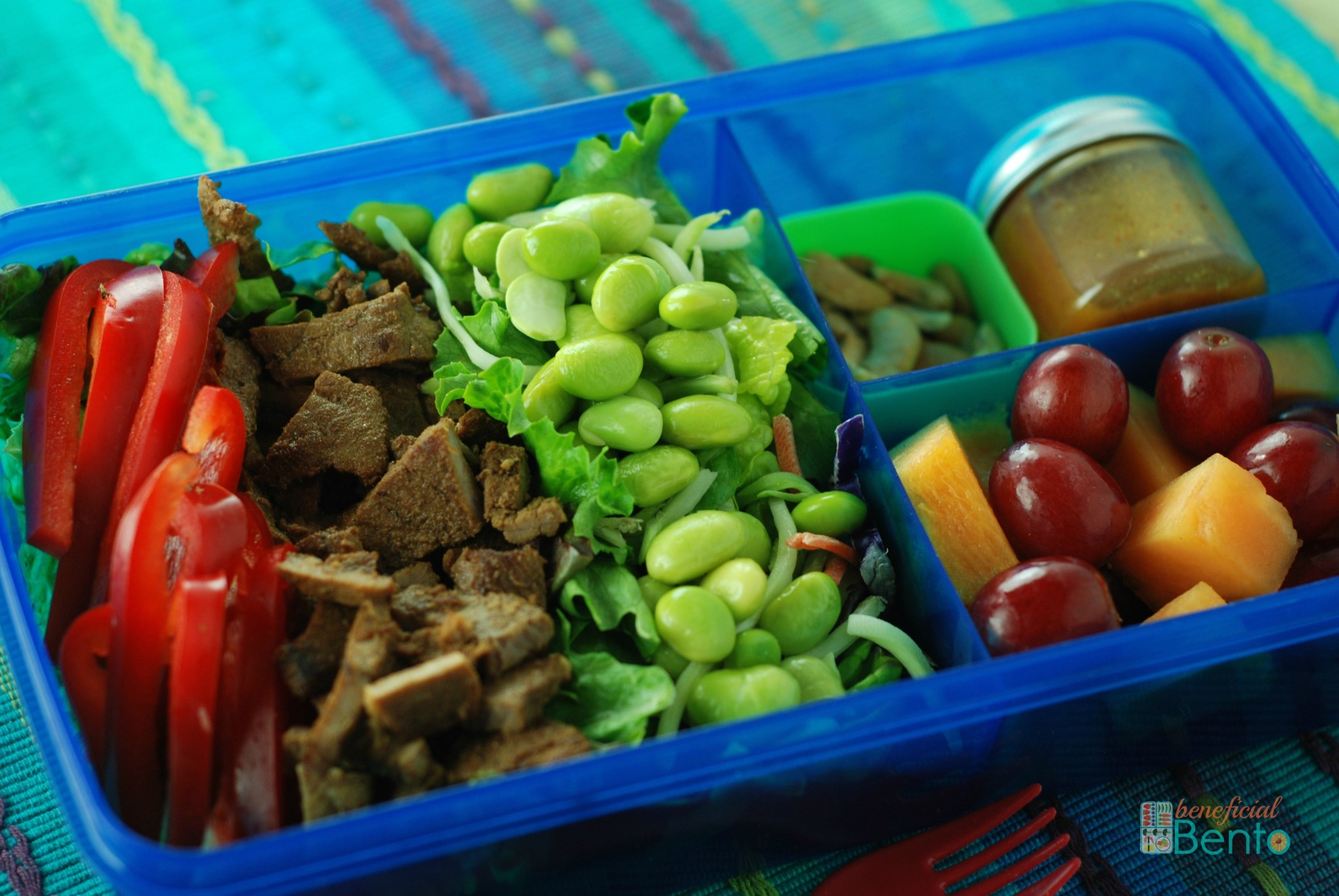 Beef and Edamame Salad - awesome combo of flavors, and colors!