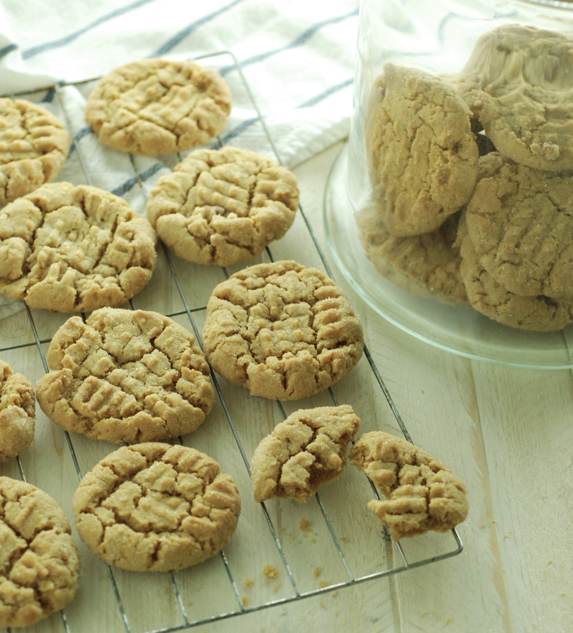 Old-fashioned, fresh out of the oven peanut butter cookies, but made gluten free! My cookie dreams have come true!