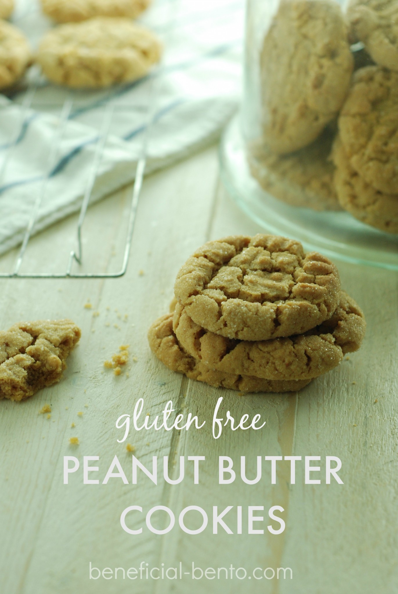 If you eat gluten free, you can still relive your childhood memories of having hot, chewy cookies fresh out of the oven with this old-fashioned recipe from Beneficial Bento